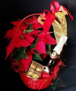 Cesto Natal Espumante