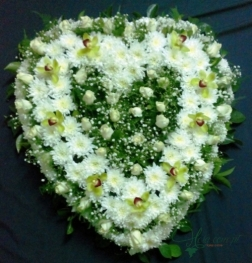 Coração - FNB015